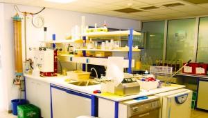 Amstel | Glampedakis Laboratories