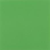 Franke - Paradise Green FSS-224